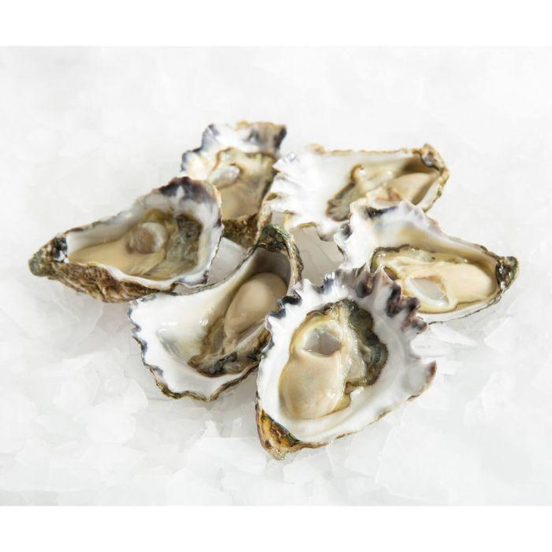 Champagne & Colchester Oysters