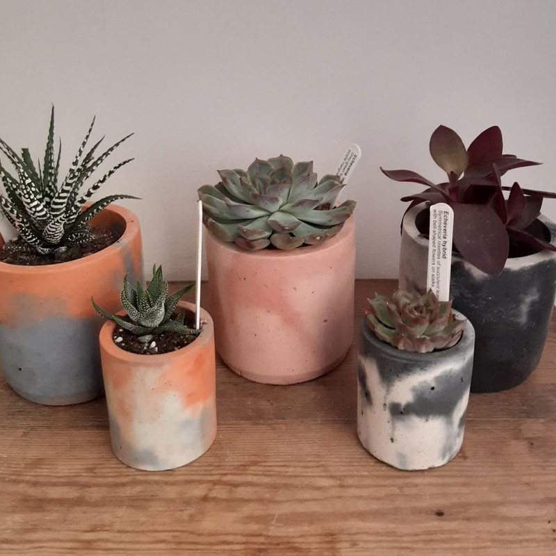 Smith and Goat concrete pots in an array of lovely colours!
