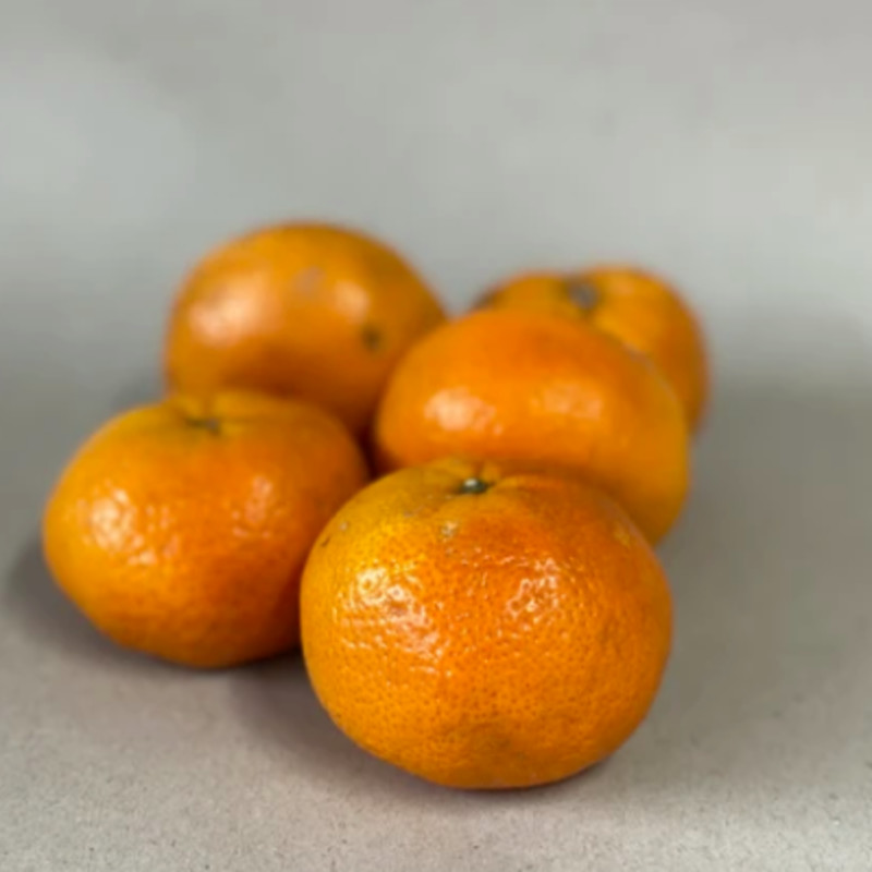 Satsuma - bag of 3