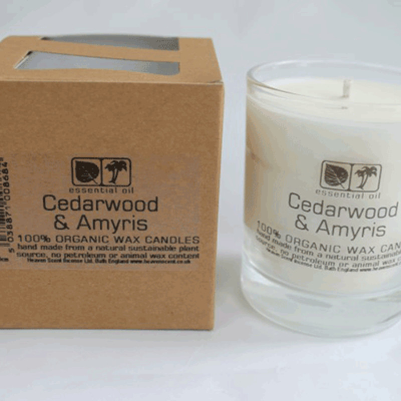 Heaven Scent Large Candle in Glass Pot - Cedar & Amyris